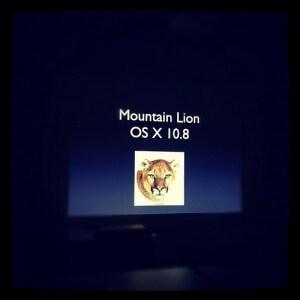 山ライオンを入れたよ